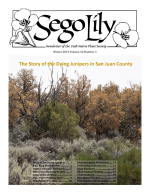 Sego Lily 2019 Winter Issue