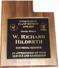 Hildreth plaque
