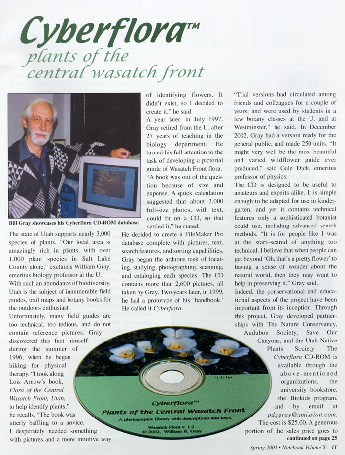 Cyberflora article - page 1